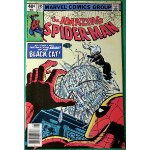 Amazing Spider-Man (1963) #205 VF/NM (9.0) Black Cat 4th appearance
