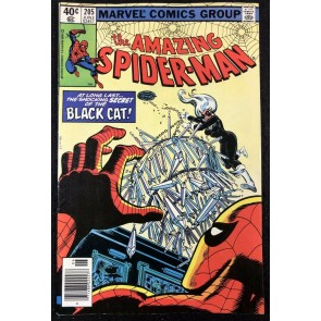 Amazing Spider-Man (1963) #205 VF- (7.5) Early Black Cat cover