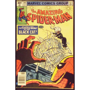 AMAZING SPIDER-MAN #205 VF/NM 4TH APPEARANCE BLACK CAT
