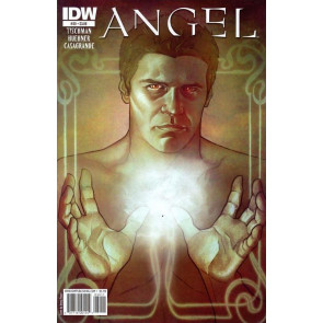ANGEL #39 VF/NM COVER A IDW BUFFY SPIKE