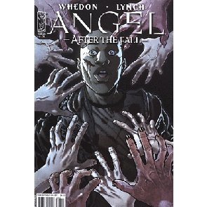 ANGEL: AFTER THE FALL #8 NM COVER A IDW WHEDON SPIKE