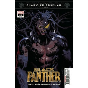 Black Panther (2018) #23 (#195) VF/NM Daniel Acuña Cover