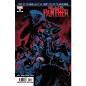 Black Panther (2018) #20 (#192) VF/NM