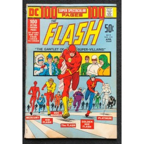 DC 100 Page Super Spectacular (1972) #11 FN (6.0) Flash #214 DC-11