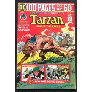 DC 100 Page Super Spectacular (1974) #55 Tarzan #231 FN (6.0) DC-55