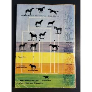 Dell Giant A Treasury of Horses #1 (1955) G Dell Comics Horse breeds & history|