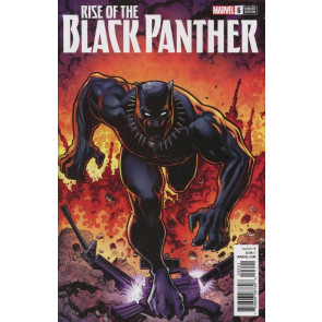 Rise of the Black Panther (2018) #6 VF/NM Arthur Adams Variant Cover