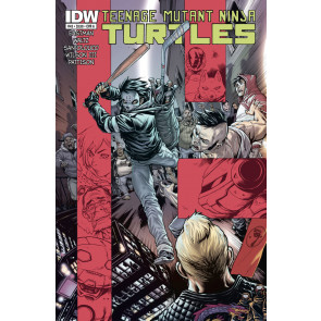 Teenage Mutant Ninja Turtles (2011) #45 VF/NM IDW