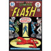 Flash (1959) #234 FN+ (6.5) Rogues Gallery