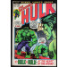 Incredible Hulk (1968) #156 VF+ (8.5) Hulk vs Hulk Jarella Story