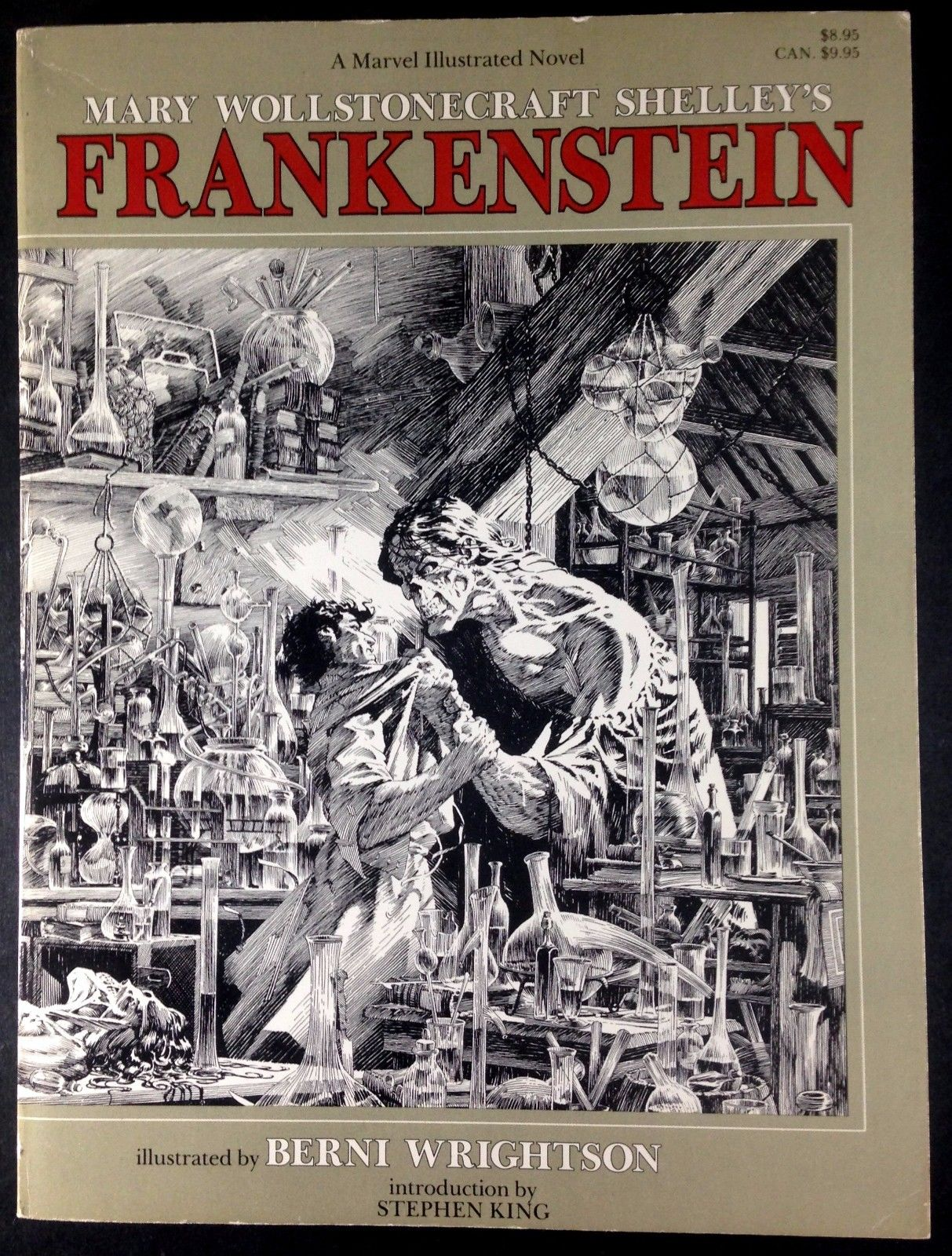 an overview of the victors fight against nature in the novel frankenstein by mary shelley